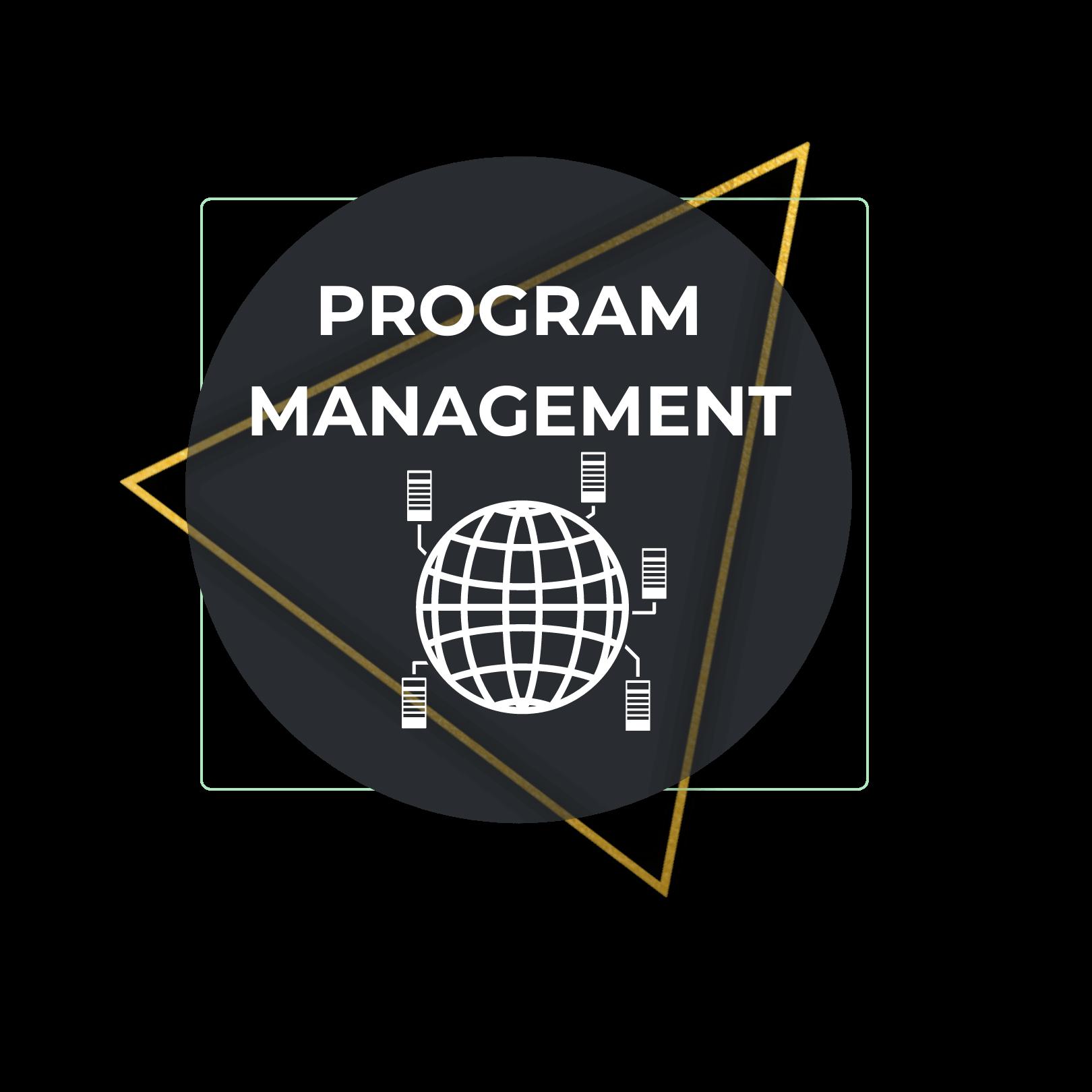 Program Management, Agile Business Concepts
